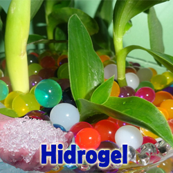http://hidrogel.bisnisant.web.id